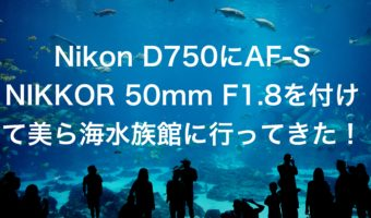Nikon D750にAF-S NIKKOR 50mm F1.8を付けて美ら海水族館に行ってきた!