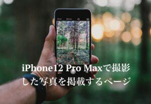 iPhone12 Pro Maxで撮影した写真を掲載するページ
